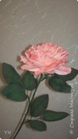 роза из фоамирана фото 2