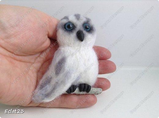 Привет, соседи.  Недавно меня попросили сделать войлочную сову. фото 7