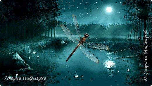 Любите ли вы сказки, как люблю их я? Однажды в теплую летнюю ночь летела стрекоза. фото 2