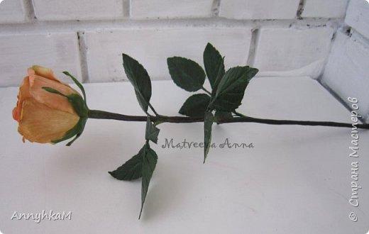 Добрый вечер, страна! Думала не буду больше делать розы, примитивные они у меня получались. Но тут оказались у меня в руках живые розочки и руки мои не смогли остановиться.  фото 9