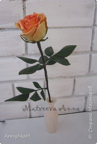 Добрый вечер, страна! Думала не буду больше делать розы, примитивные они у меня получались. Но тут оказались у меня в руках живые розочки и руки мои не смогли остановиться.  фото 8