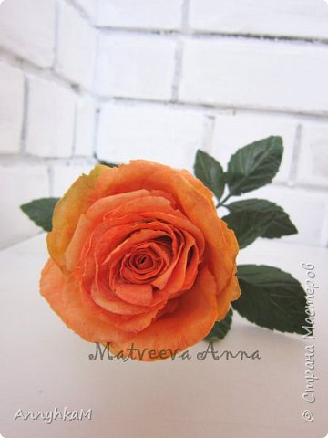 Добрый вечер, страна! Думала не буду больше делать розы, примитивные они у меня получались. Но тут оказались у меня в руках живые розочки и руки мои не смогли остановиться.  фото 7