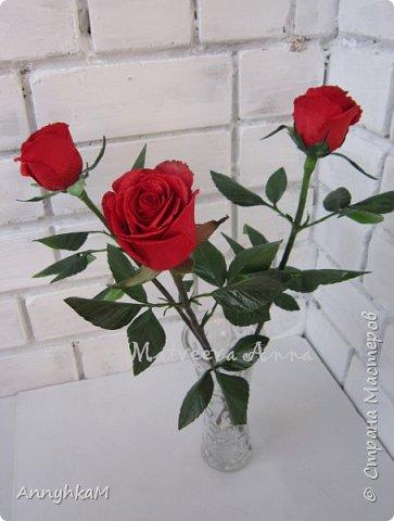 Добрый вечер, страна! Думала не буду больше делать розы, примитивные они у меня получались. Но тут оказались у меня в руках живые розочки и руки мои не смогли остановиться.  фото 2