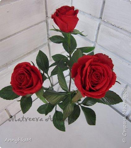 Добрый вечер, страна! Думала не буду больше делать розы, примитивные они у меня получались. Но тут оказались у меня в руках живые розочки и руки мои не смогли остановиться.  фото 3