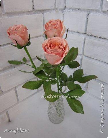 Добрый вечер, страна! Думала не буду больше делать розы, примитивные они у меня получались. Но тут оказались у меня в руках живые розочки и руки мои не смогли остановиться.  фото 5
