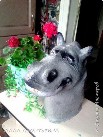 опять цемент...и голова бегемота готова стоять  в огороде рядом с вазоном цветов!...вот только цветы пока  в рассаде!  но, лето впереди! фото 1