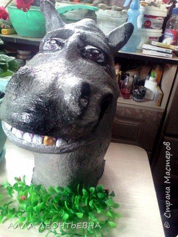 опять цемент...и голова бегемота готова стоять  в огороде рядом с вазоном цветов!...вот только цветы пока  в рассаде!  но, лето впереди! фото 2