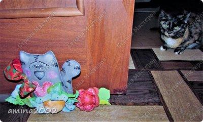 Добрый день! Так уж случилось, что живут у меня в доме три кошки, а если быть точнее два кота и кошка.Четвероногие обитатели нашего дома, категорически не любят закрытые двери, поэтому двери в доме открыты везде, кроме входной двери, даже на лоджию открыты(благо утеплена она). фото 5
