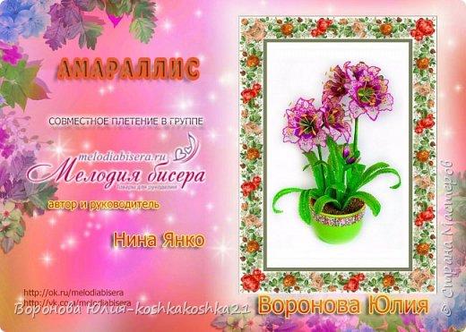 Представляю мой новый Цветок Амарилис,высота получилась 60 см,очень крупные цветы.Полтора месяца работы. Все сплетено из чешского бисера Preciosa ,а окантовка зеленых листев сделала чешским треугольным бисером Preciosa. Создавалось на Совместном плетении в группе Мелодия бисера под руководством автора и куратора Нины Янко,за что ей отдельное спасибо!!! фото 2