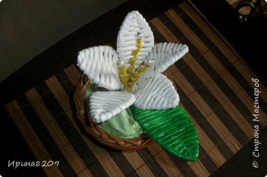 Эта курочка сплетена в школу моей дочери  к пасхе.В  курочку и лукошко вставлены цветы с конфетами. фото 2
