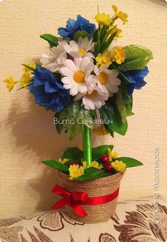 Любимые полевые цветочки))) Весна пришла - ждём лето!