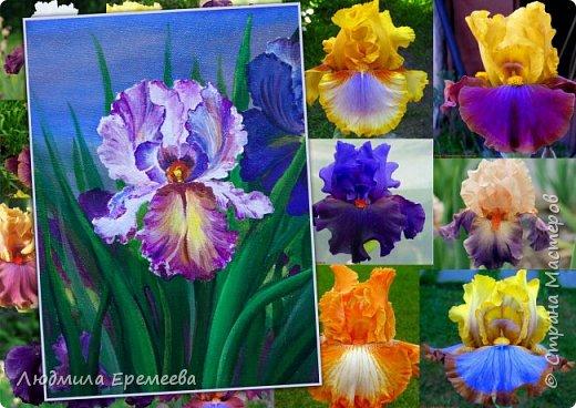 Цветочное настроение фото 1