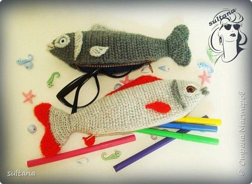 Рыбка- пенал, футляр для мелочи, косметичка, таблетница и т. д.  23-25 см. длина фото 1