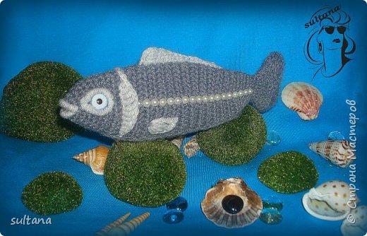 Рыбка- пенал, футляр для мелочи, косметичка, таблетница и т. д.  23-25 см. длина фото 6