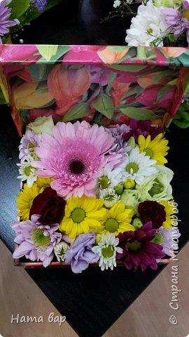 живые цветы фото 7