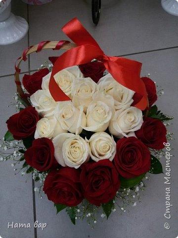 живые цветы фото 1