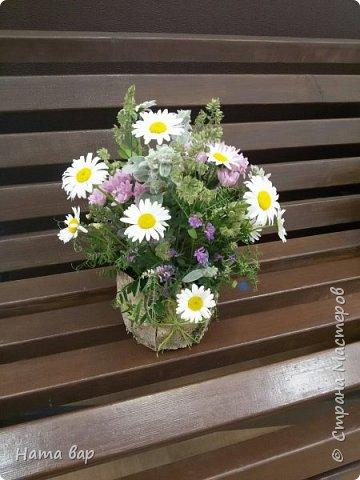 живые цветы фото 8