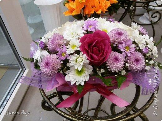 живые цветы фото 13