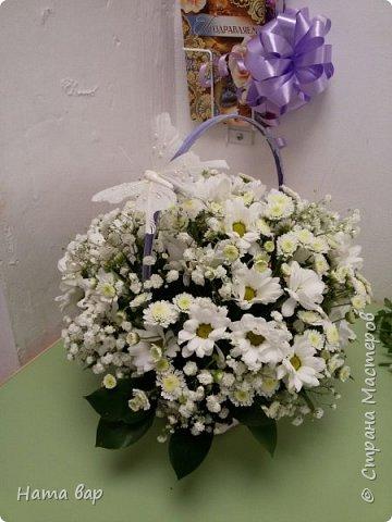 живые цветы фото 14