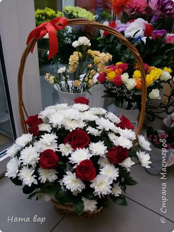 живые цветы фото 19