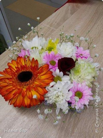 живые цветы фото 24