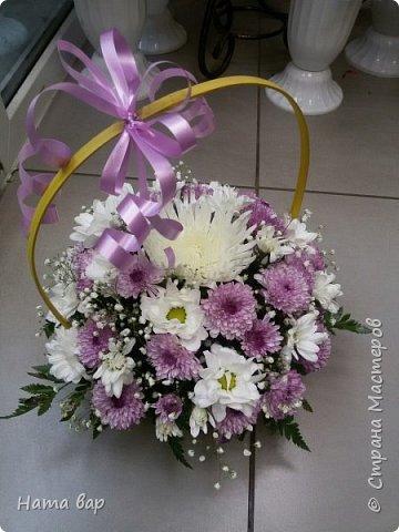 живые цветы фото 16