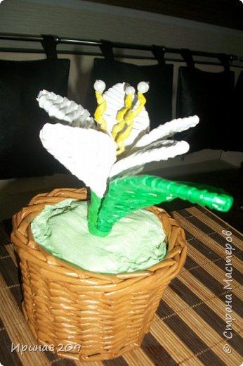 Эта курочка сплетена в школу моей дочери  к пасхе.В  курочку и лукошко вставлены цветы с конфетами. фото 4
