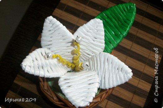 Эта курочка сплетена в школу моей дочери  к пасхе.В  курочку и лукошко вставлены цветы с конфетами. фото 3