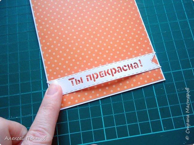 Здравствуйте, дорогие друзья! Сегодня мы с мамой Еленой Поляковой представляем наш совместный  проект,  который был разработан в рамках моей школьной исследовательской работы. Мастер-класс по созданию открытки с шейкером. фото 22