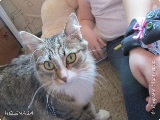 Сегодня я к вам с простенькой пошивушкой ,вернее 3.это котятки.А почему компьютерные?Да на одном иностранном сайте попался вот такой кот,название заинтересовало,мышь компьютерную знаю.а вот с котом не знакома......Оказалось хитрые японцы предлагают одевать такие игрушки-подушки как браслеты на руку.когда сидишь долго за клавиатурой,чтобы руки не уставали.И там было фото девочки с котиком на руке.....и его увидел мой любимый дитёнок....сразу бабушка мне сошьёшь?!Конечно сшила и сразу трёх....Вот первый на руке у Кати,застёжка на пуговки фото 11