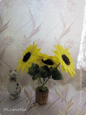 Опять подсолнушки))) фото 3