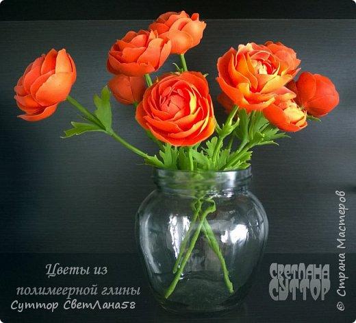 анютки, огоньки и тюльпаны из ХФ фото 3