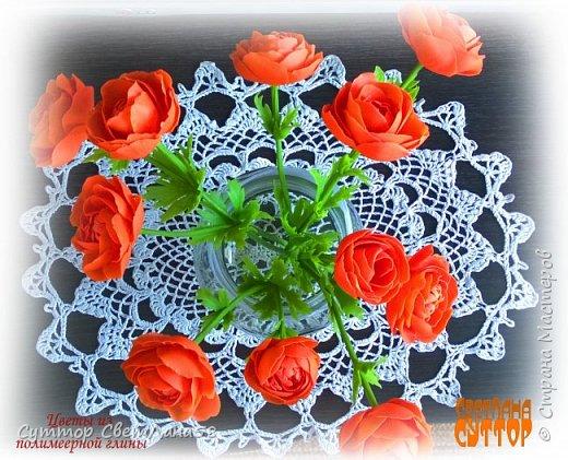 анютки, огоньки и тюльпаны из ХФ фото 6