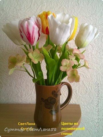 анютки, огоньки и тюльпаны из ХФ фото 7