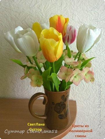 анютки, огоньки и тюльпаны из ХФ фото 8