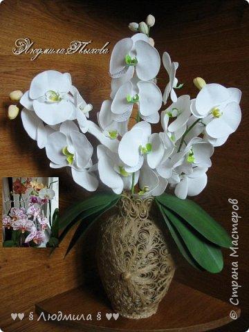 Рада Всех приветствовать! Одна фотография. У меня 8 орхидей , очень их люблю! Недавно поправляла белую и случайно обломила весь цветонос...! О горе мне! Решила срочно восполнить потерю, тем более, давно собиралась попробовать орхидеи сделать из фома. Случай подвернулся, как говорится. К Вашему вниманию. Почему ко дню рождения? 1 Апреля, как это не смешно, др № 60 .Ужас, ужасный! Здоровья Всем, творческих успехов, настроения весеннего и ЛЮБВИ!!!