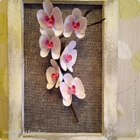 Материалы:ракушки,клей,краска,шпатлевка фото 1