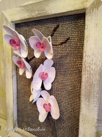 Материалы:ракушки,клей,краска,шпатлевка фото 2