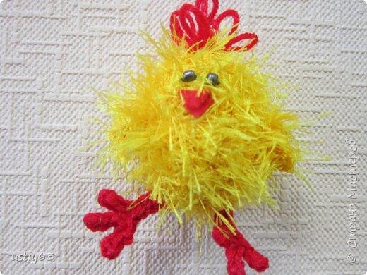 Большой выводок цыплят фото 9