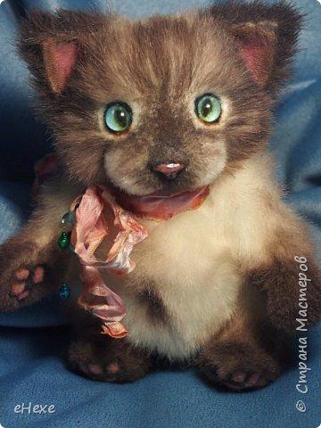 """Профессиональный мастер-теддист Светлана Гуменникова организовала замечательный совместный пошив в вк """"Мартовские котики"""". По одной и той же выкройке и урокам было сшито много котиков, кошек и котят разными мастерами, и они абсолютно не похожи друг на друга!   """"Нууу, мааам... Это не я!!! Они сами на меня напали!"""" фото 2"""