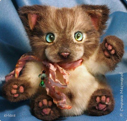 """Профессиональный мастер-теддист Светлана Гуменникова организовала замечательный совместный пошив в вк """"Мартовские котики"""". По одной и той же выкройке и урокам было сшито много котиков, кошек и котят разными мастерами, и они абсолютно не похожи друг на друга!   """"Нууу, мааам... Это не я!!! Они сами на меня напали!"""" фото 5"""