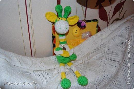 Амигуруми. Жирафик Тимоха. фото 2