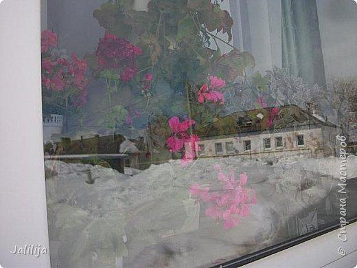 Мы с моими цветами смотрим в окно: горы снега! А мы хотим весну, тепло, хотим на волю,  на воздух. Прогноз погоды пока неутешительный, только начало таять и опять целую неделю снег, метели. Но мы не унываем, мы готовимся, наряжаемся к весне, мечтаем о лете.  Смотрите сами.  фото 57