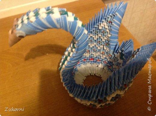 Радужная лебедь фото 3