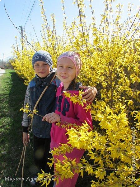 Всем привет!  Наступила весна и мы с детишками всё свободное время стараемся проводить на свежем воздухе. Мы ходим в небольшие походы по нашим местным окрестностям, а во время этих прогулок мы стараемся по-внимательней присматриваться ко всему, что нас окружает.  А окружает нас невероятная красота!!! Хочу поделится с Вами нашими мартовскими находками.... фото 1