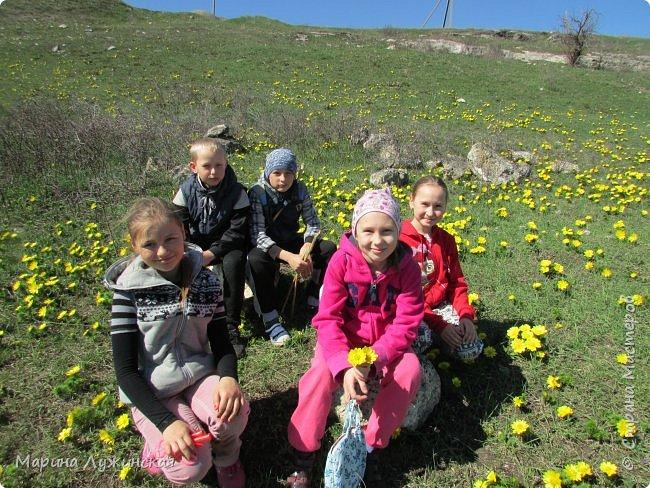 Всем привет!  Наступила весна и мы с детишками всё свободное время стараемся проводить на свежем воздухе. Мы ходим в небольшие походы по нашим местным окрестностям, а во время этих прогулок мы стараемся по-внимательней присматриваться ко всему, что нас окружает.  А окружает нас невероятная красота!!! Хочу поделится с Вами нашими мартовскими находками.... фото 59