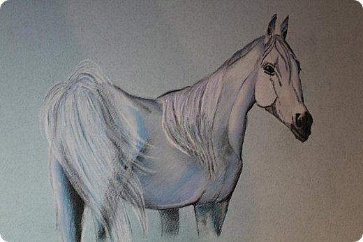 Мои первые работы сухой пастелью и не только фото 1