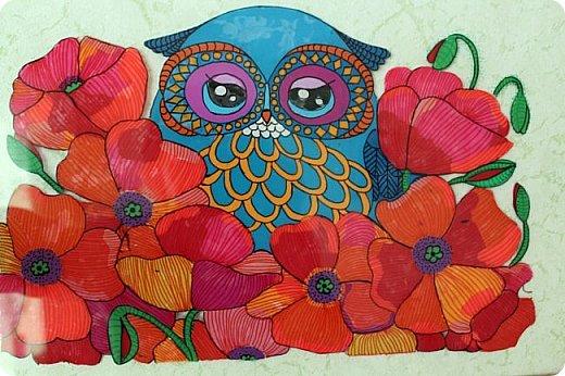 Мои первые работы сухой пастелью и не только фото 2
