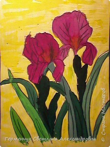"Раскраски  ""Цветы . Весна""  ребят 4 ""В"" класса (взяты из Интернета) фото 10"