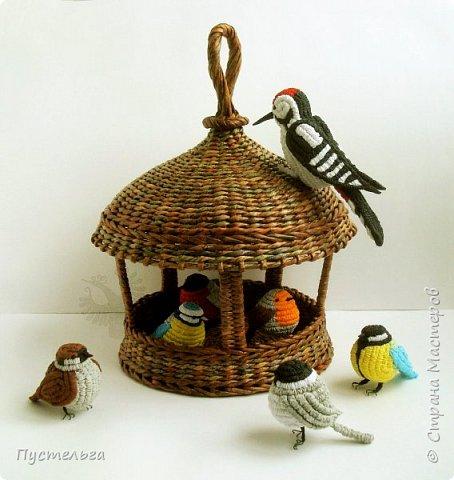 Ежегодно 1 апреля отмечается Международный день птиц. В это время из теплых краев возвращаются пернатые, а взрослые и дети вывешивают для них новые скворечники. Союз охраны птиц России избрал птицей 2017 года буроголовую гаичку - пухляка.  фото 10